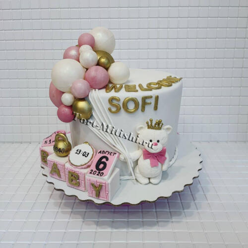 tort-mitishi46